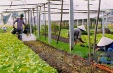 ADB hỗ trợ nâng cao chất lượng hàng nông nghiệp