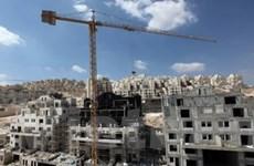Dấu hiệu tích cực trong đàm phán Palestine-Israel