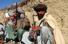 Taliban bác đề nghị hòa giải của Tổng thống Karzai