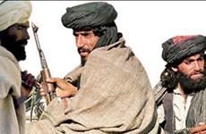 Liên quân tiến hành chiến dịch truy quét Taliban