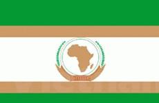 AU quyết định đình chỉ tư cách thành viên của Niger