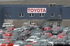 Các hãng ôtô Nhật thu hồi sản phẩm lỗi kỹ thuật