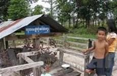 """""""Biến"""" sào huyệt Pol Pot thành điểm du lịch"""