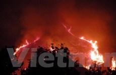 Cháy rừng liên tiếp bùng phát tại đảo Phú Quốc