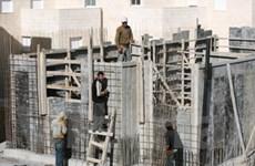 Đàm phán Palestine-Israel có dấu hiệu tích cực