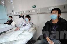 Hongkong tìm ra phương pháp mới điều trị cúm A