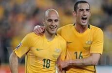 Sydney lên kế hoạch cho trận đấu Australia-Ghana