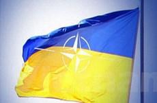 "Ukraine-NATO sắp tập trận chung ""Gió biển-2010"""