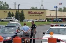 Liên tiếp xảy ra các vụ xả súng bừa bãi tại Mỹ
