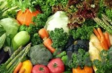 Những thực phẩm nên và không nên ăn khi ung thư