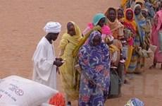 Thúc đẩy quan hệ đối tác EU-châu Phi để đạt MDG