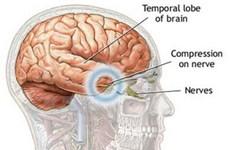 Não người ngày một co lại trong 20.000 năm qua