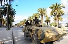 Tunisia nỗ lực thành lập chính phủ đoàn kết dân tộc
