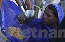 FAO giúp các nước bị tác động bởi giá lương thực
