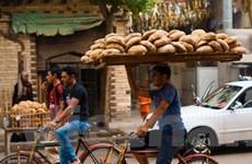 Bánh mỳ - Giải pháp cho cuộc khủng hoảng Ai Cập
