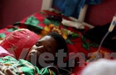 Đột phá mới trong việc điều trị căn bệnh sốt rét