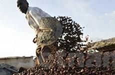 EU bỏ lệnh cấm vận kinh tế đối với Cote d'Ivoire