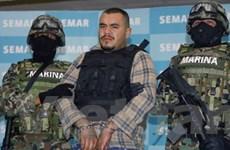 Tuyên bố Mỹ-Mexico hợp tác chống tội phạm, ma túy