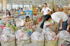 Thực hiện phân loại rác thải rắn tại chợ đầu mối