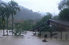 Mưa to gây thiệt hại lớn tại Lào Cai, Ninh Thuận