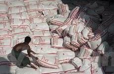 Lụt tại Thái không tác động lớn đến thị trường gạo