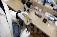 Hàn Quốc phát triển loại thuốc điều trị ung thư mới
