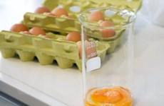 Nguồn cung trứng thiếu hụt sau lệnh cấm buôn trứng