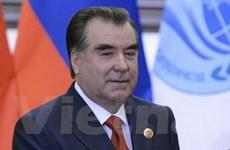 Chính phủ Tajikistan tạm ngừng chiến dịch quân sự