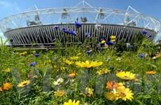 Khai mạc Olympic 2012: Nhiều bí mật đến phút chót