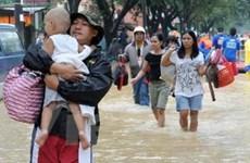 Số người chết do mưa bão ở Philippines lên tới 85