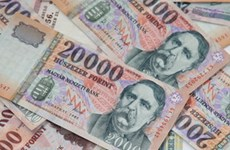 Hungary muốn tham gia khu vực dùng đồng tiền chung