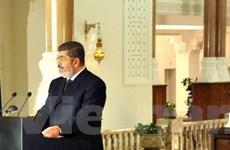 Thượng viện Ai Cập thông qua luật bầu cử quốc hội