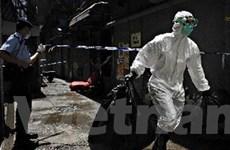 Hơn 1/5 dân số thế giới đã từng nhiễm virus H1N1