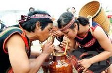 """Lưu giữ """"văn hóa rượu cần"""" ở các gia đình Đắk Nông"""