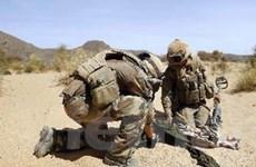 Sắp triển khai lực lượng gìn giữ hòa bình đến Mali