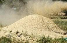 Lúa mỳ xuất khẩu từ Đức sang Iran tháng 2 vẫn cao
