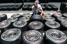 Các xe đua Công thức 1 sẽ sử dụng lốp nhiều màu