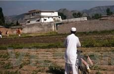 Bằng chứng tình báo Pakistan che giấu bin Laden?