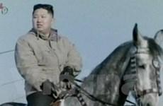Triều Tiên ân xá tù nhân mừng sinh nhật ông Kim