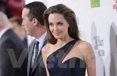 Ra mắt phim đầu tay do Angelina Jolie đạo diễn