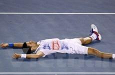 Đả bại Murray, Djokovic tái ngộ Nadal ở chung kết
