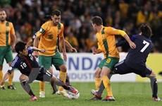 Australia chia điểm với Nhật Bản, Hàn thắng lớn