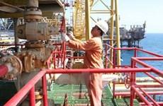 """Hợp tác dầu khí Việt-Nga đang """"đơm hoa kết trái"""""""