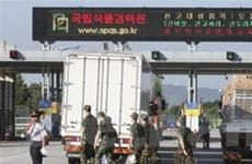 Hàn Quốc giúp Triều Tiên nâng cấp đường dây liên lạc