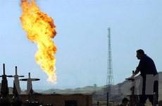 Các công ty dầu lửa quốc tế lớn đang trở lại Iraq