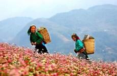 Công bố Năm du lịch 4 tỉnh miền núi phía Bắc 2010
