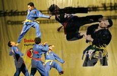 Giải đấu võ thuật giữa các nhà vô địch tại Nga