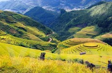Giao lưu, quảng bá du lịch Việt Nam tại Pháp