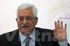 Palestine kéo dài nhiệm kỳ của Tổng thống Abbas