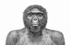 10 phát hiện khoa học tiêu biểu nhất năm 2009